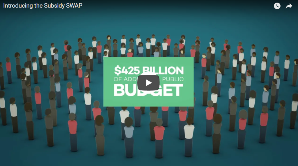 Introducing the subsidy swap video